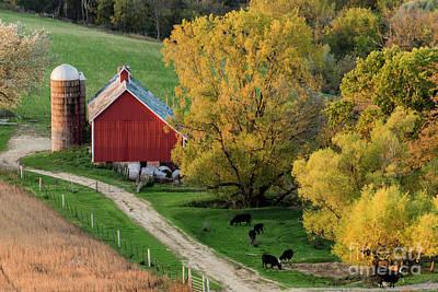 Photograph - Autumn In Iowa by Willard Sharp
