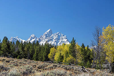 American West - Autumn in Jackson Hole by Daryl L Hunter