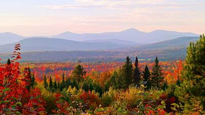 Photograph - Autumn In Maine by Mike Breau