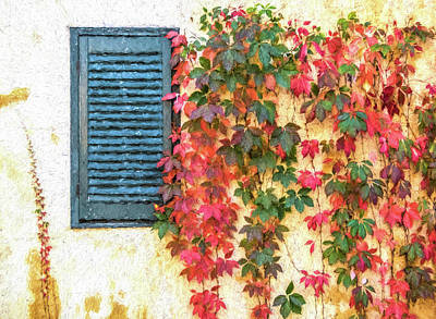 Photograph - Autumn In Napa by David Letts