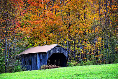 Photograph - Autumn In New England by Mike Martin