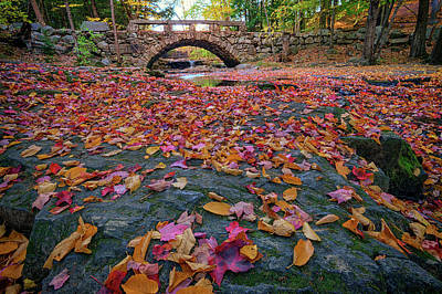Colorful Leaves Photograph - Autumn In New England by Rick Berk