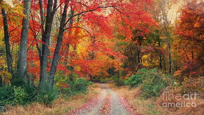 Autumn In New Jersey Art Print