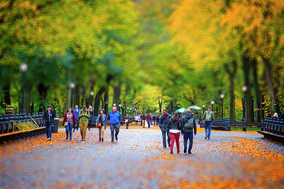 Photograph - Autumn In New York by Mark Andrew Thomas