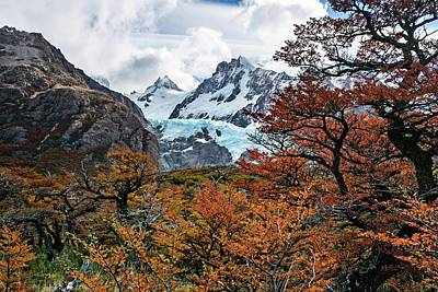 Photograph - Autumn In Patagonia  by Ryan Weddle
