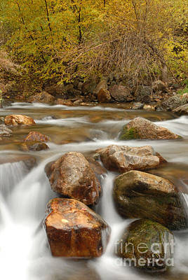 Autumn In Provo Canyon Art Print by Dennis Hammer