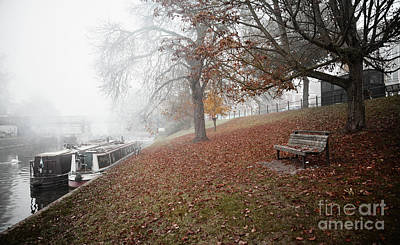 Photograph - Autumn In River Cam by Eden Baed