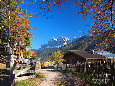 Photograph - Autumn In South Tyrol by IPics Photography