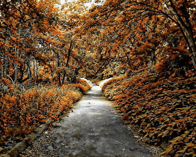 Photograph - Autumn In Stamford by Anthony Dezenzio