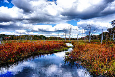 Photograph - Autumn In The Air And Clouds In The River by Lilia D