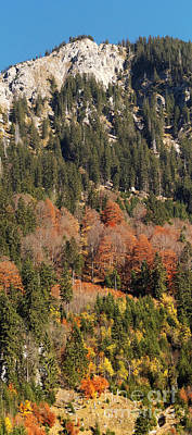Photograph - Autumn In The Alps 1 by Rudi Prott