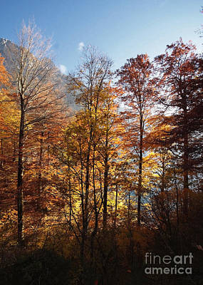 Photograph - Autumn In The Alps 2 by Rudi Prott