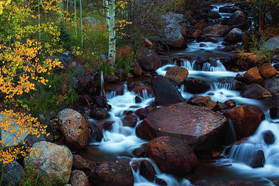 Photograph - Autumn In The Arapaho National Forest by John De Bord