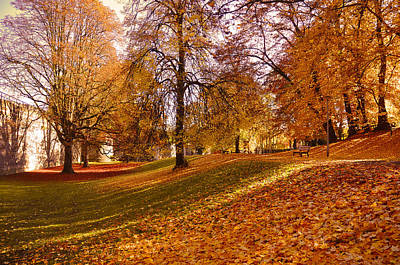 Photograph - Autumn In The City Park Maastricht by Nop Briex