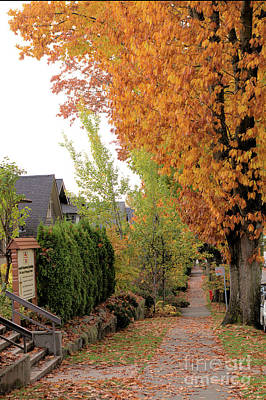 Photograph - Autumn In The City by Victor K
