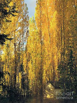 Stellar Interstellar - Autumn in the Country 4 by Victor K