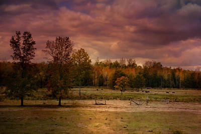 Photograph - Autumn In The Country by Jai Johnson