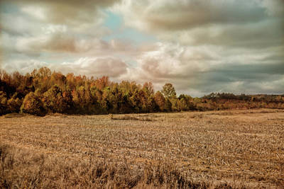 Autumn In The Country Landscape Scene Art Print by Jai Johnson