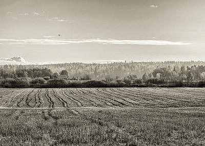 Photograph - Autumn In The Countryside Bw by Ismo Raisanen