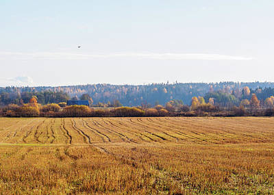 Photograph - Autumn In The Countryside by Ismo Raisanen