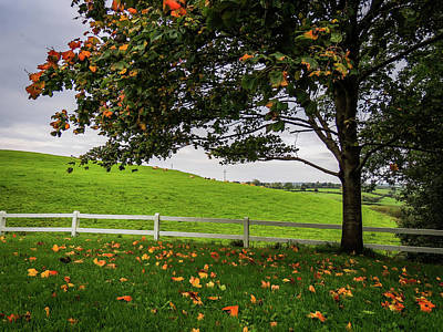 Photograph - Autumn In The County Clare Countryside by James Truett