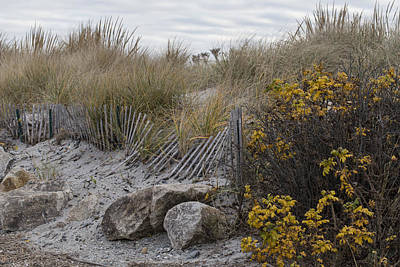 Sand Fences Photograph - Autumn In The Dunes by Andrew Pacheco