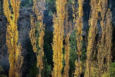 Autumn In The Hoz Del Escabas Gorge. In The Serrania De Cuenca, Spain - 2 Art Print by Peter Eastland