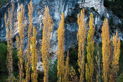 Autumn In The Hoz Del Escabas Gorge. In The Serrania De Cuenca, Spain - 1 Art Print by Peter Eastland