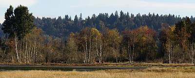 Photograph - Autumn In The Nisqually Estuary  by I'ina Van Lawick