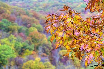 Photograph - Autumn In The Ozarks by JC Findley