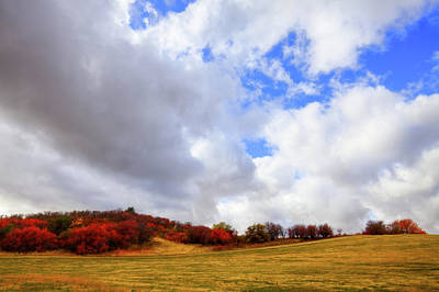 Photograph - Autumn In The Palouse by David Patterson