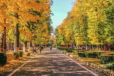 Photograph - Autumn In The Park by Claudia M Photography
