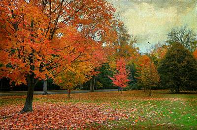 Photograph - Autumn In The Park by Diana Angstadt
