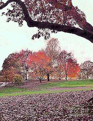 Photograph - Autumn In The Park by Merton Allen