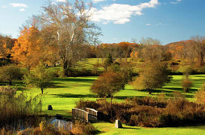 Photograph - Autumn In The Park by Nancy De Flon