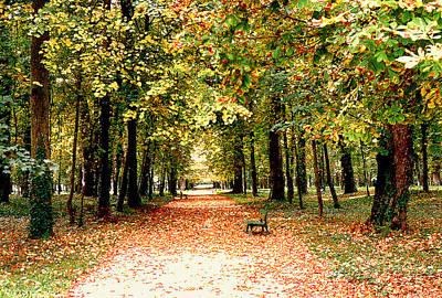 Autumn In The Park Art Print by Nancy Mueller