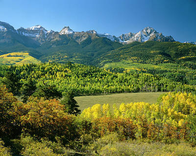 Photograph - Autumn In The San Juans Of Colorado by Mark Miller