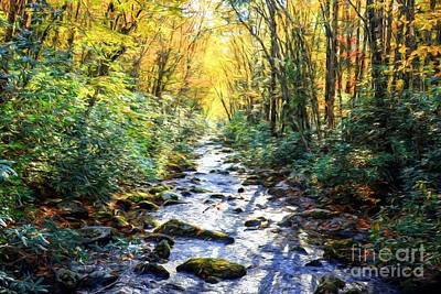 Photograph - Autumn In The Smoky Mountains by Mel Steinhauer