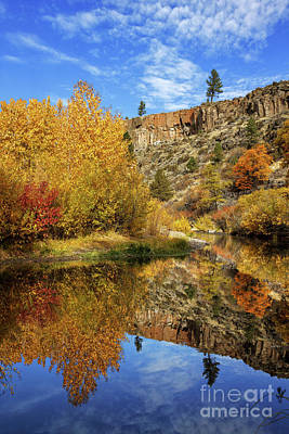 Photograph - Autumn In The Susan River Canyon by James Eddy