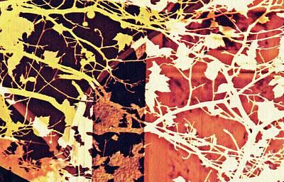 Digital Art - Autumn In The Vineyard 2 by Sarah Loft