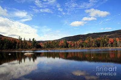 Photograph - Autumn In The White Mountains 2 by Paula Guttilla