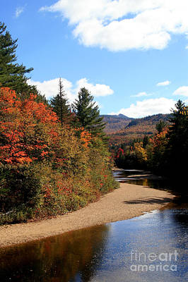 Photograph - Autumn In The White Mountains 3 by Paula Guttilla