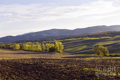 Photograph - Autumn In Tuscany by Leonardo Fanini