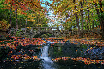 Hobbit Photograph - Autumn In Vaughan Woods by Rick Berk