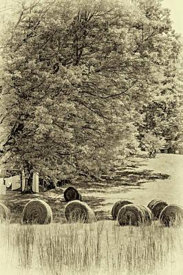 Autumn In West Virginia - Paint Sepia Art Print