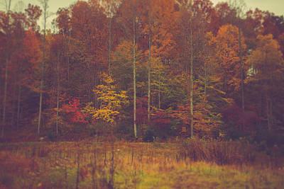 Virginia Photograph - Autumn In West Virginia by Shane Holsclaw