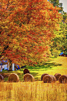 Autumn In West Virginia Art Print by Steve Harrington