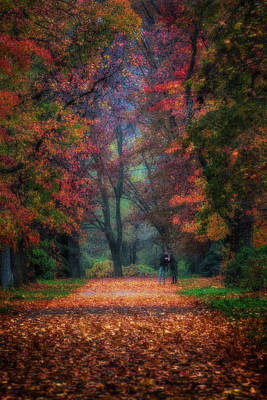 Photograph - Autumn Is Here by Roberto Pagani