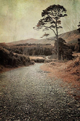 Photograph - Autumn Journey In Wicklow Hills by Jenny Rainbow