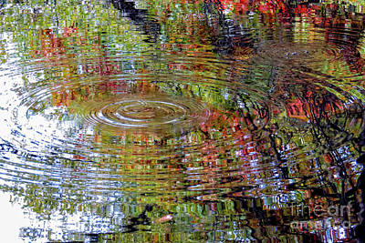 Photograph - Autumn Kaleidoscope by Kimberly Nyce